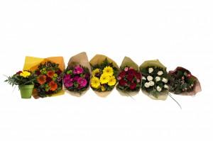 bouquets allwmk