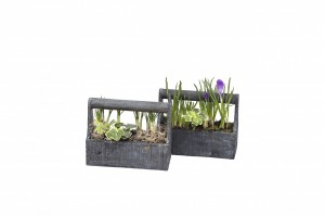planters medium basketwm
