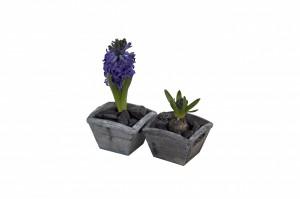 planters small squarewmk