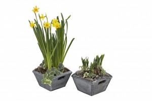 planters square 1wmk